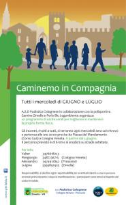 Caminemo in Compagnian 2013 - Locandina